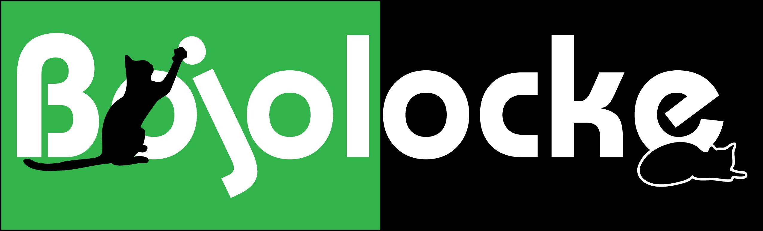 Bojolocke